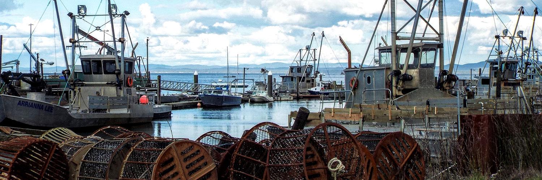 boats at port of peninsula