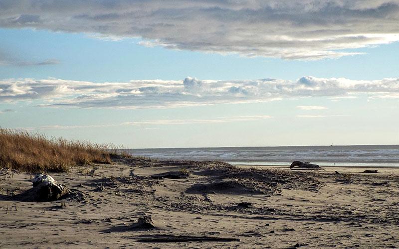 scenic beach photo