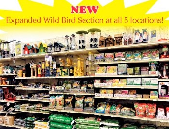 dennis company expanded-bird-section
