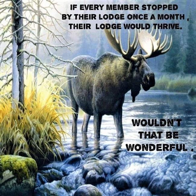 Peninsula moose lodge 2362