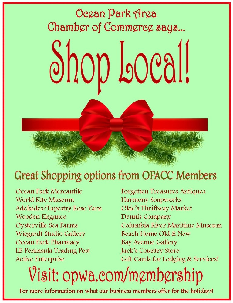 shop local flyer resized